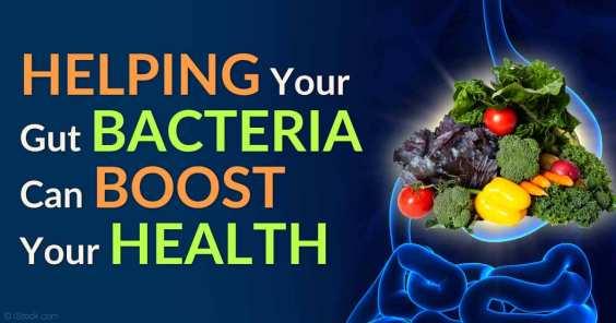 gut-bacteria-boost-health-fb