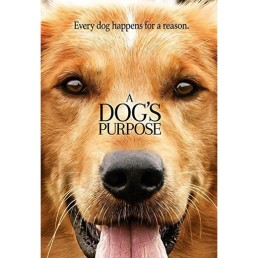 a dogs purpose.jpg